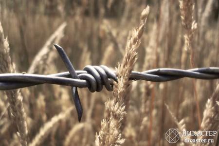 закон о СРО 2016 года - что следует знать о регионализации